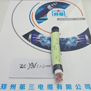 郑州三厂郑星阻燃电缆ZC-YJV-5X6mm